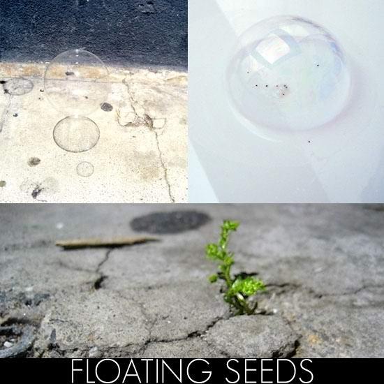 Bloom:peddling green